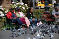 秘鲁人在广场 免版税图库摄影