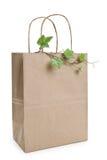 αγορές φυτών καφετιού εγ& Στοκ Εικόνα