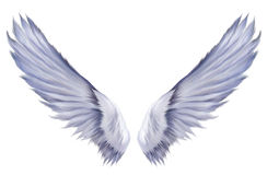 天使六翼天使翼 库存照片