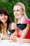 красивейшие выпивая девушки собирают вино Стоковые Изображения RF