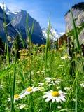 ландшафт Швейцария Стоковое Изображение RF