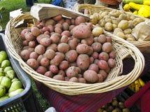 хуторянин выходят органические картошки вышед на рынок на рынок Стоковое фото RF