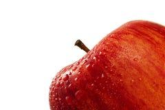 红色苹果的特写镜头弄湿了 库存照片
