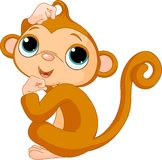 猴子认为 免版税库存照片