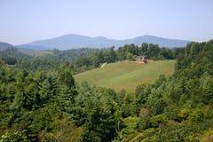 绿色山景 免版税库存图片