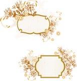 葡萄酒花卉横幅 免版税图库摄影