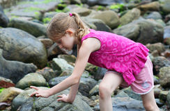 το κορίτσι ανακαλύψεων κ Στοκ φωτογραφίες με δικαίωμα ελεύθερης χρήσης