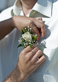 钮扣眼上插的花婚礼 免版税库存照片
