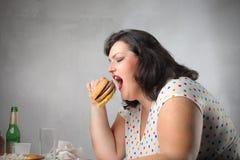 不健康的正餐 免版税库存图片