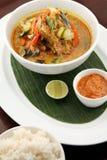 亚洲鱼食物汤 图库摄影