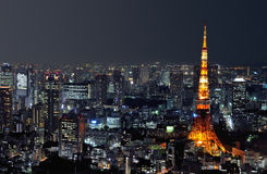 башня токио ночи Стоковая Фотография