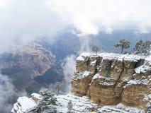大峡谷雪 免版税库存图片