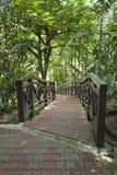 парк Куала Лумпур птиц Стоковая Фотография RF