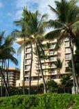 热带海滩前的手段 库存照片