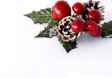 圣诞节绿叶 库存照片