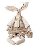 滑稽的兔子 库存照片