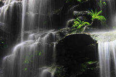 在瀑布之下 库存图片