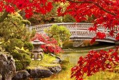 秋天庭院日语 免版税库存图片