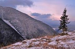 βουνά αυγής Στοκ Εικόνα