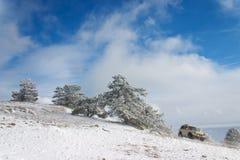 автомобиль с дороги Стоковая Фотография