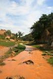 泥泞的河热带视图 免版税库存照片