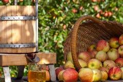 被紧压的新鲜苹果汁 免版税库存照片