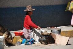 贫困秘鲁人妇女 图库摄影