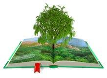 生态学的概念 库存照片