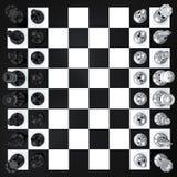 взгляд сверху шахмат Стоковая Фотография