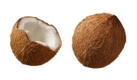 кокосы Стоковые Фото