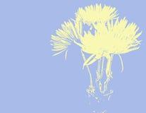 весна мумий Стоковые Изображения