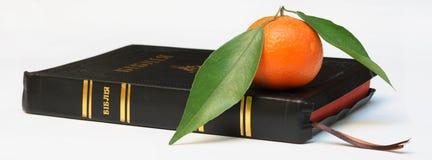 Βίβλος Στοκ Εικόνα