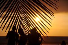 日落热带看守人 库存照片