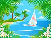 пляж цветет лето Стоковое Фото