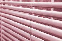 ослепляет окно Стоковые Фото