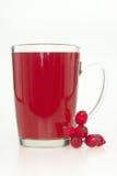 τσάι ισχίων Στοκ εικόνες με δικαίωμα ελεύθερης χρήσης