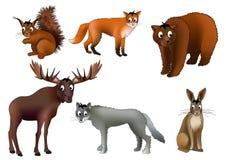 ζώα ευρωπαϊκά Στοκ Φωτογραφίες