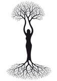 结构树妇女 免版税库存图片