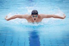 蝴蝶人执行的冲程游泳者 免版税库存照片