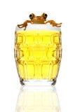 βάτραχος μπύρας Στοκ Φωτογραφία