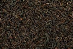 μαύρο τσάι Στοκ Φωτογραφίες