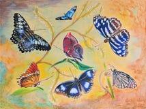 绘七的蝴蝶 库存图片