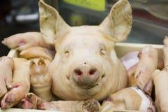 显示猪肉 免版税库存图片