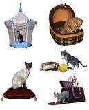 коты Стоковое фото RF