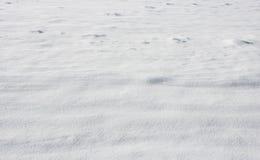 雪 库存图片