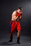 拳击手 图库摄影