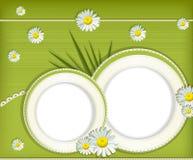 招呼看板卡的雏菊向量 免版税库存图片