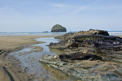 池岩石 库存图片