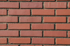 砖红色墙壁 图库摄影