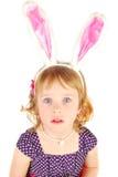 不快乐小的兔子 免版税库存图片